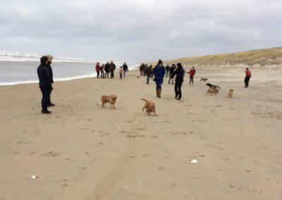 Wandeling Noordwijk december 2018